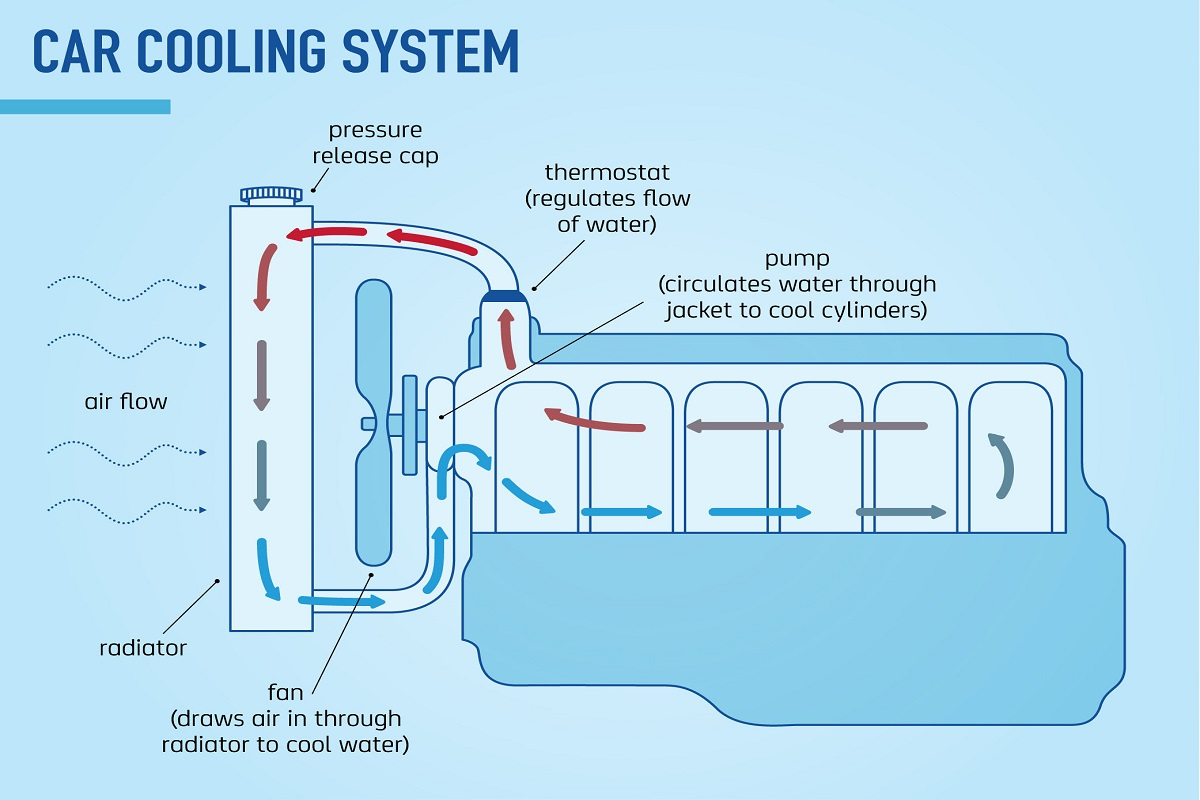 The main components of a car cooling system