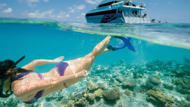 Great-Barrier-Reef-3-Day-Tour-from-Brisbane