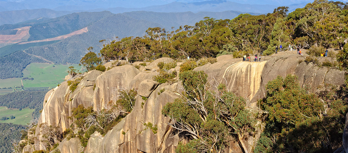Mount Buffalo Bright my nrma local guides