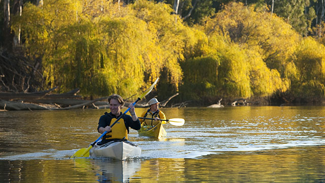 Kayaking Echuca Moama Region my nrma locals guide