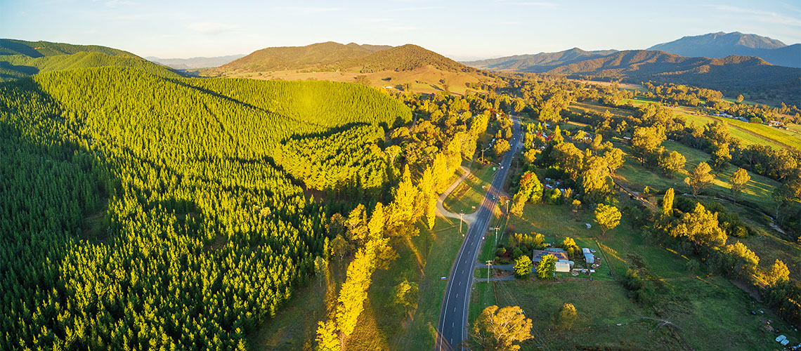 Great Alpine Road Gippsland VIC my nrma local guides