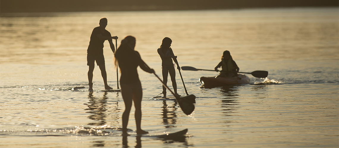 People paddle boarding Myall Shores Holiday Park my nrma local guides