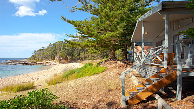 beachfront villa NRMA Murramarang Beachfront Holiday Resort NSW my nrma local guides