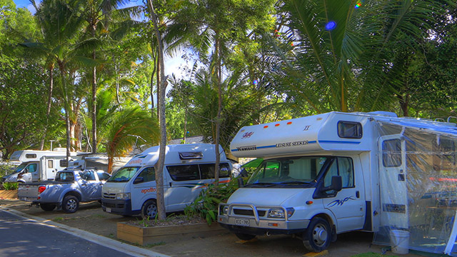 Powered Sites Accommodation Palm Cove Holiday Park NRMA Parks and Resorts QLD