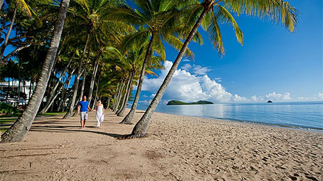 Couple walking along beach Palm Cove QLD my nrma local guides