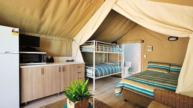 Port Arthur Holiday Park Safari Tent NRMA Blue Member Discount