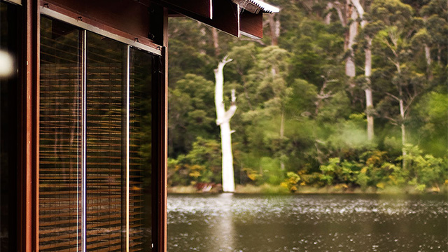 Lakeside Room View of Lake Karri Valley NRMA Holiday Parks and Resorts WA