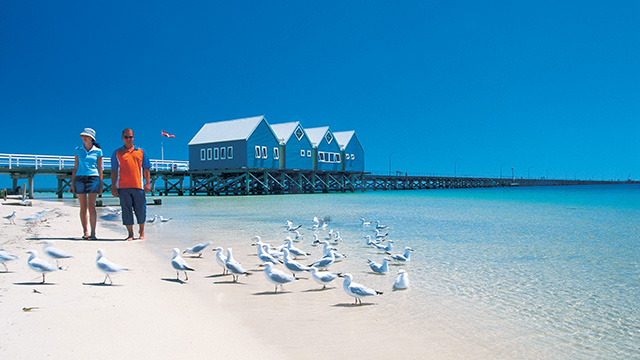 Busselton Jetty Busselton Holiday Park NRMA Holiday Parks and Resorts WA