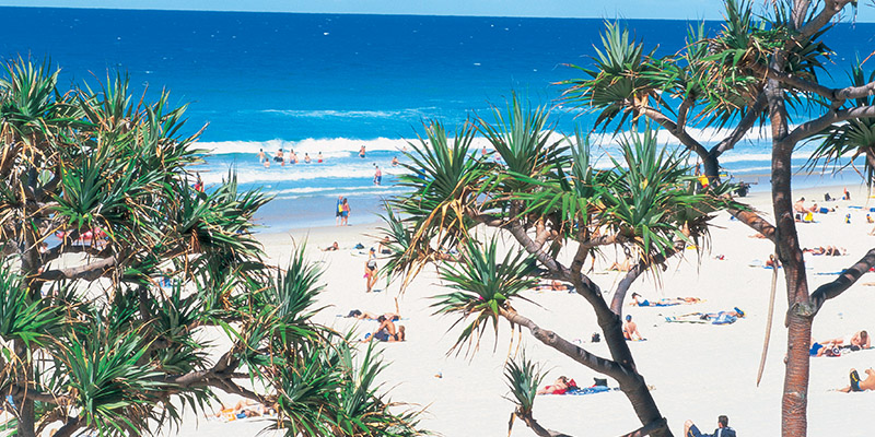 Surfers Paradise The Ultimate East Coast Summer Road Trip my nrma road trips