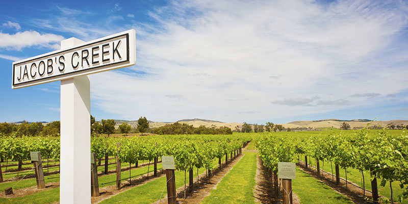 Jacobs Creek Winery Adelaide Wineries my nrma road trips