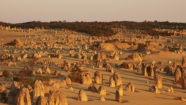 The Pinnacles Coral Coast my nrma road trips