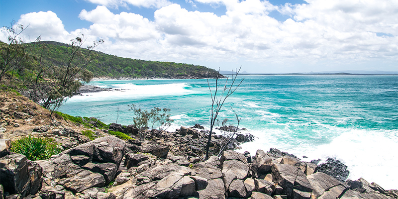 Noosa National Park Great Beach Drive my nrma road trips