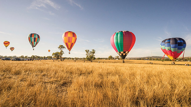 Canowindra Balloon Challenge Sydney to Dubbo my nrma road trips