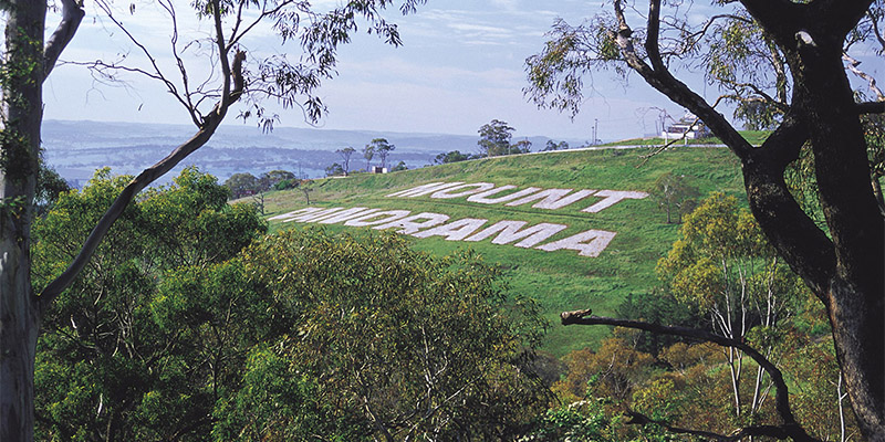 Mount Panorama Sydney to Dubbo my nrma road trips